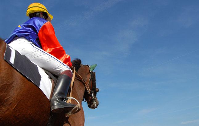 Remise de 15 % sur chevaux - Spécial Meeting d'hiver de Vincenne